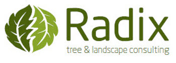 Radix Tree and Landscape Consulting